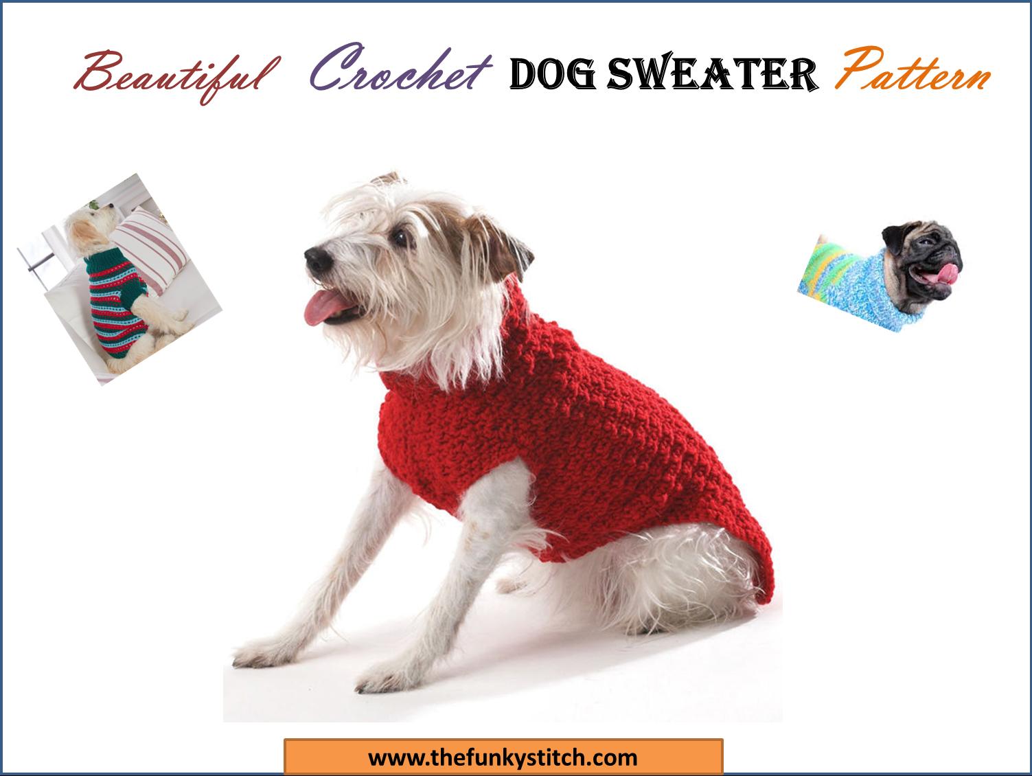 25 Beautiful Crochet Dog Sweater Pattern The Funky Stitch